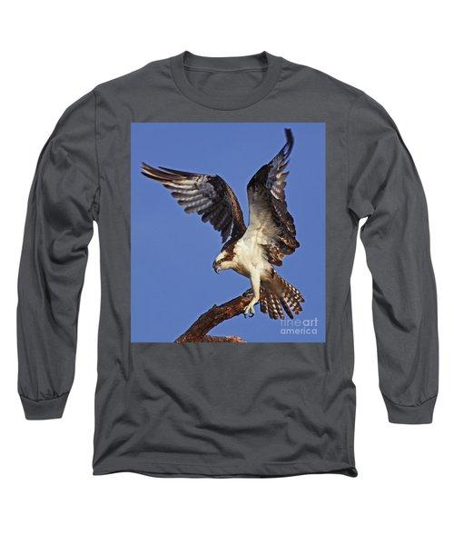 Angel Osprey Long Sleeve T-Shirt