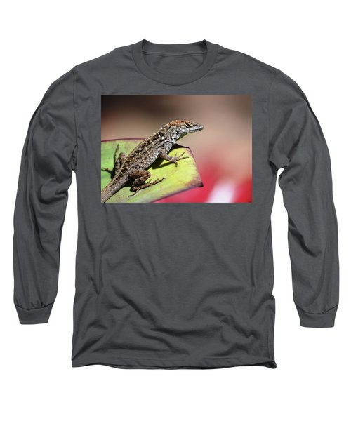 Anole In Rose Long Sleeve T-Shirt