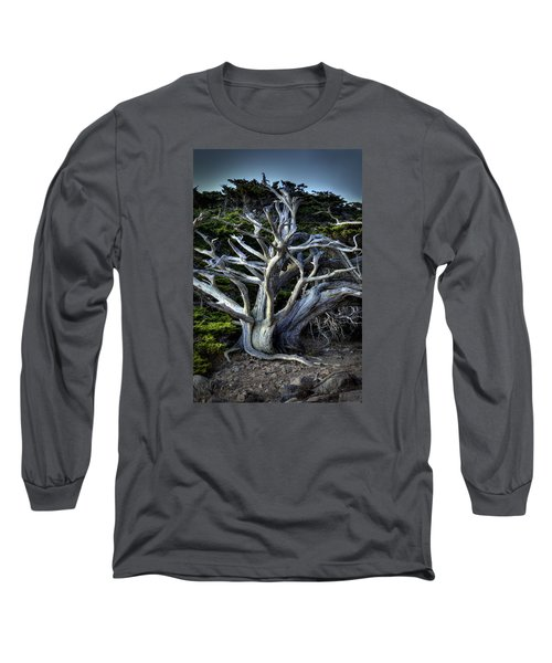 Ansel's Cypress Long Sleeve T-Shirt