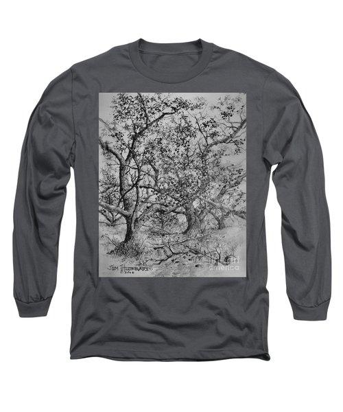 Apple Orchard Long Sleeve T-Shirt by Jim Hubbard
