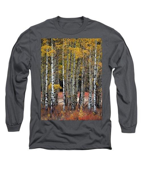 Appreciation Long Sleeve T-Shirt