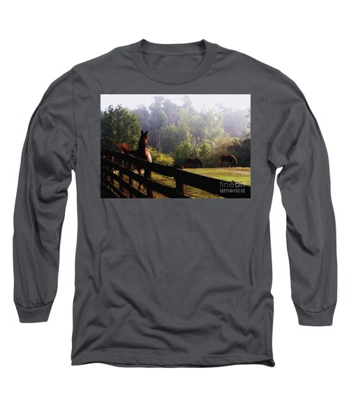 Long Sleeve T-Shirt featuring the painting Arabian Horses In Field by Debra Crank