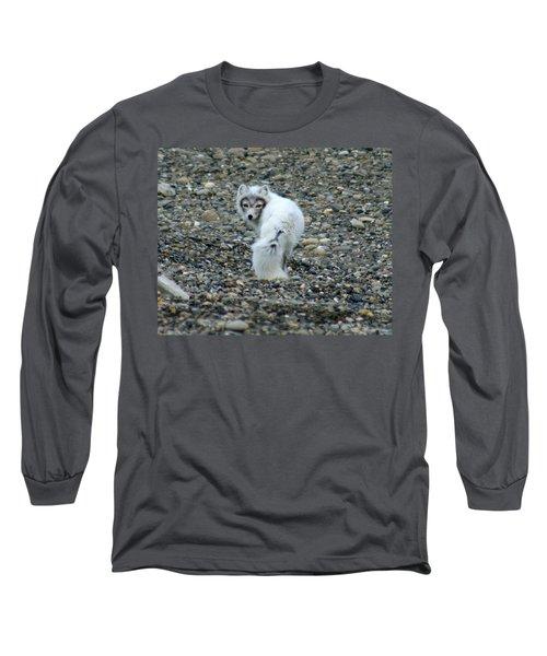 Arctic Fox Long Sleeve T-Shirt by Anthony Jones
