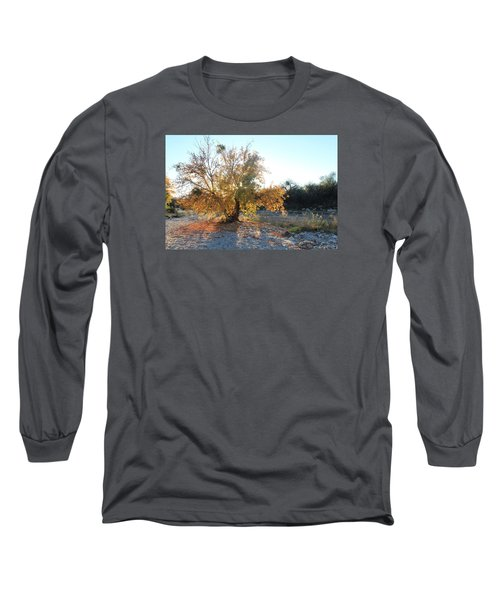Arizona Birds' Nests Long Sleeve T-Shirt