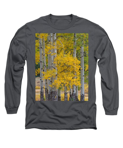 Aspen Bouquet Long Sleeve T-Shirt