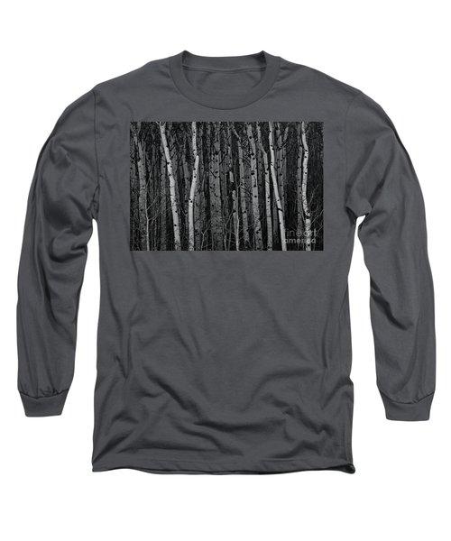 Aspen Forest Long Sleeve T-Shirt by Brad Allen Fine Art