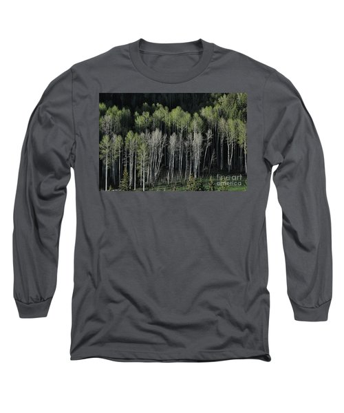 Aspen Spring Long Sleeve T-Shirt