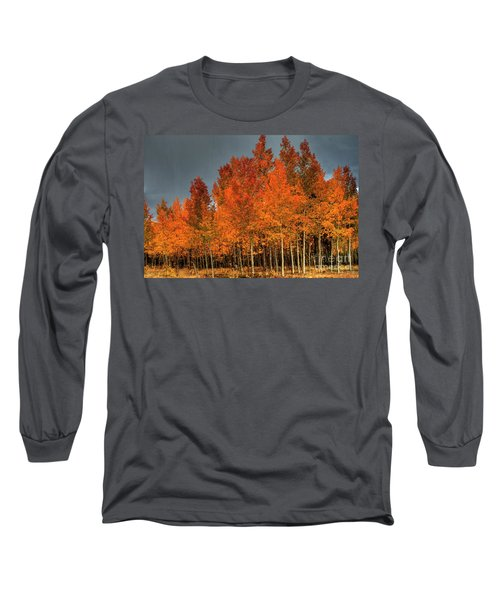 At Their Peak Long Sleeve T-Shirt