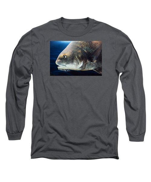 Long Sleeve T-Shirt featuring the photograph Atlantic Cod by James Kirkikis