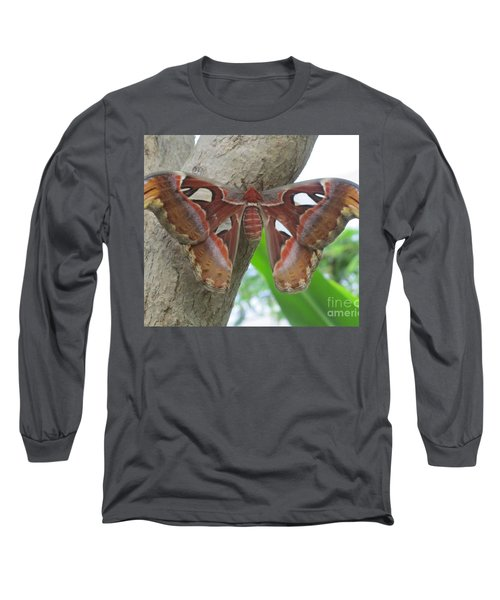 Atlas Butterfly Long Sleeve T-Shirt