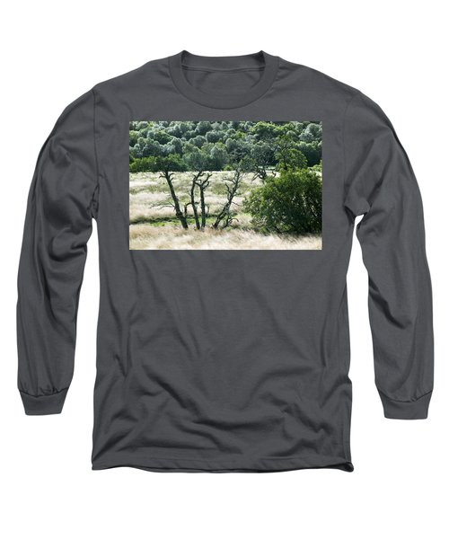 Autumn And Grass In Isle Of Skye, Uk Long Sleeve T-Shirt