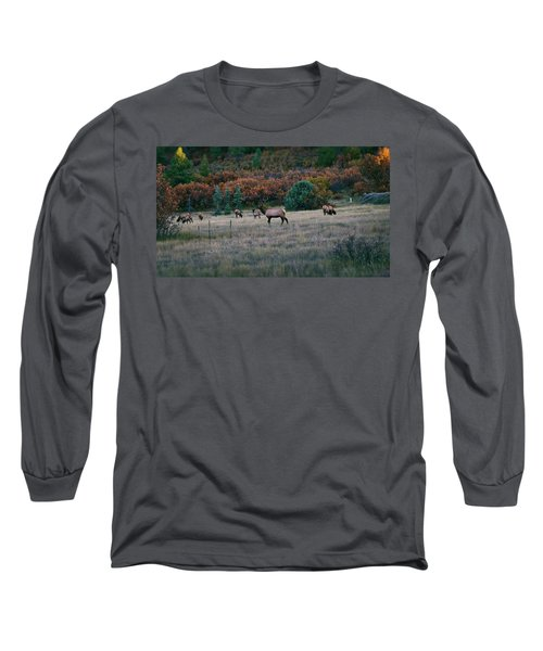 Autumn Bull Elk Long Sleeve T-Shirt