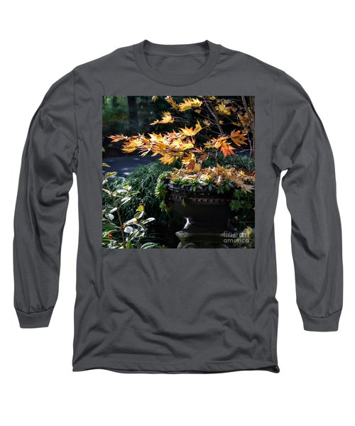 Long Sleeve T-Shirt featuring the photograph Autumn Maple And Succulents by Tanya Searcy