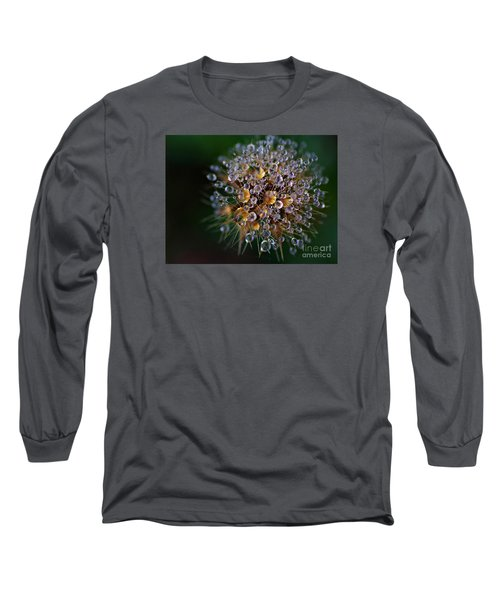 Autumn Pearls Long Sleeve T-Shirt by AmaS Art