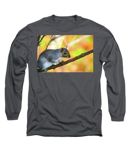 Long Sleeve T-Shirt featuring the photograph Autumn Squirrel by Karol Livote