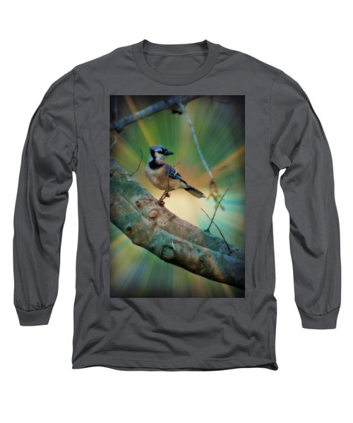 Baby Blue Long Sleeve T-Shirt