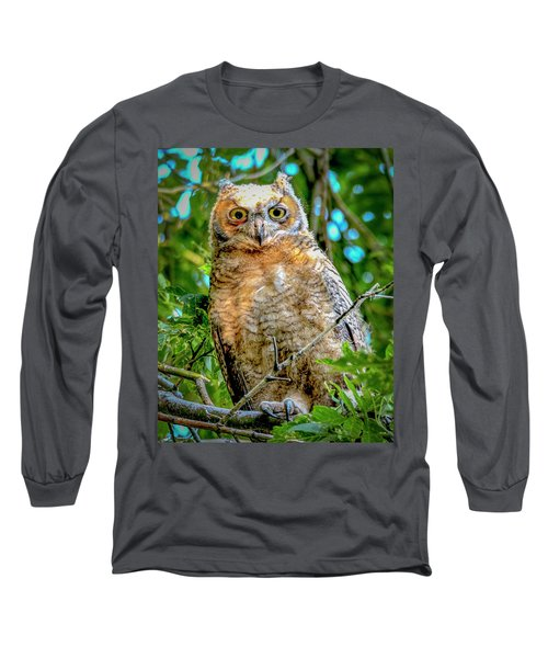 Baby Great Horned Owl Long Sleeve T-Shirt