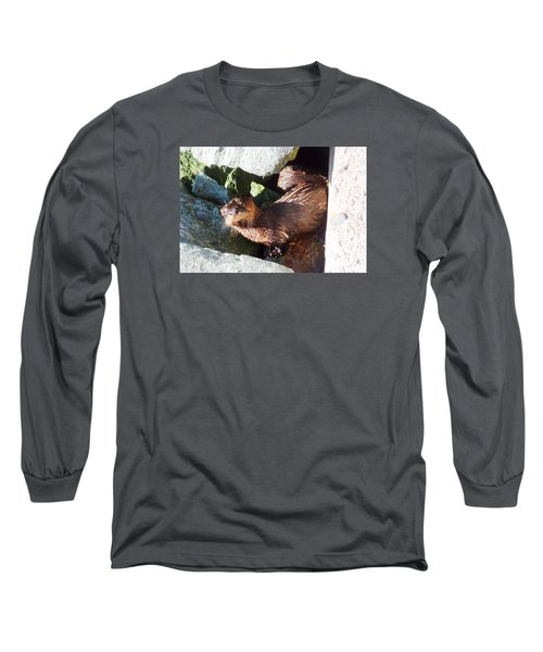 Baby Otter Checking Us Out Long Sleeve T-Shirt