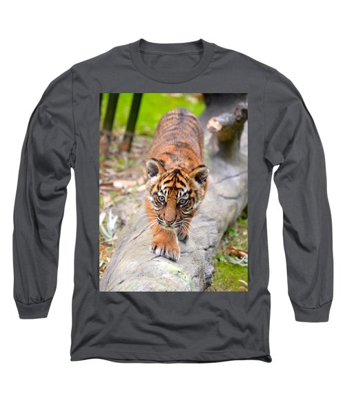 Baby Sumatran Tiger Cub Long Sleeve T-Shirt by Richard Bryce and Family