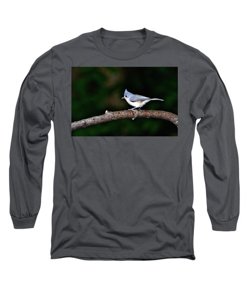 Back Yard Bird Long Sleeve T-Shirt