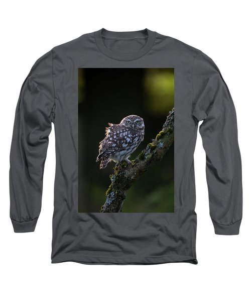 Backlit Little Owl Long Sleeve T-Shirt