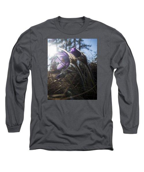 Backlit Pasque Flowers Long Sleeve T-Shirt