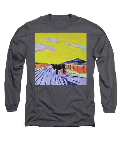 Backroads Abiquiu, New Mexico Long Sleeve T-Shirt by Brenda Pressnall