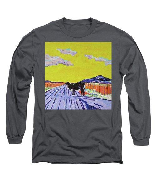 Backroads Abiquiu, New Mexico Long Sleeve T-Shirt