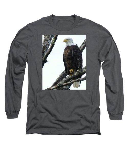 Bald Eagle 4 Long Sleeve T-Shirt by Steven Clipperton