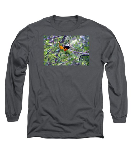 Baltimore Northern Oriole Long Sleeve T-Shirt