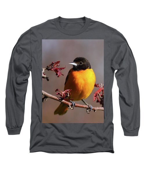 Baltimore Oriole II Long Sleeve T-Shirt