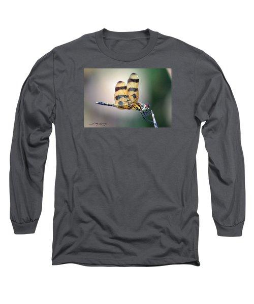 Banded Pennant Long Sleeve T-Shirt