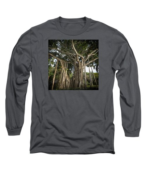 Banyan Tree At Bonnet House Long Sleeve T-Shirt