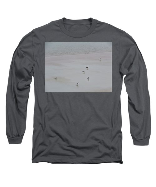 Beach Seagulls Long Sleeve T-Shirt by Kathy Long