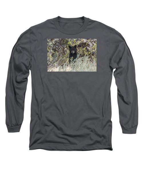 Bear Cub Looking For Mom Long Sleeve T-Shirt by Stephen  Johnson