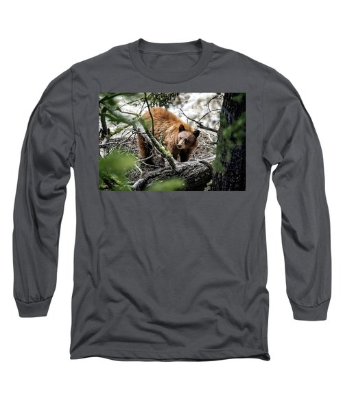 Long Sleeve T-Shirt featuring the photograph Bear In Trees by Scott Read