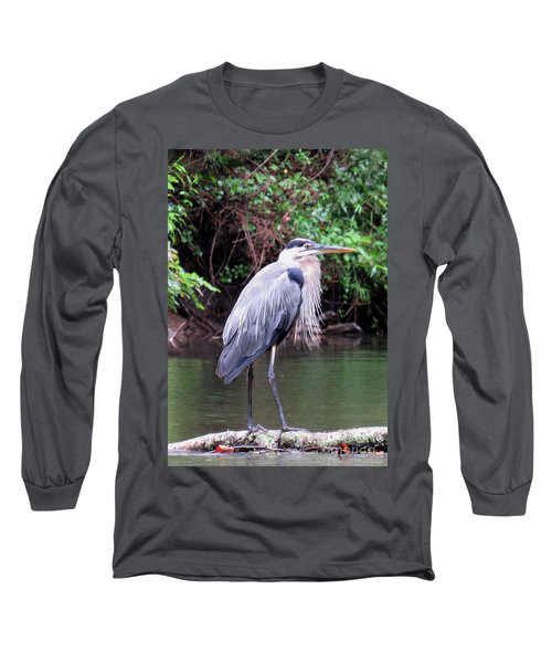 Bearded Blue Heron Long Sleeve T-Shirt