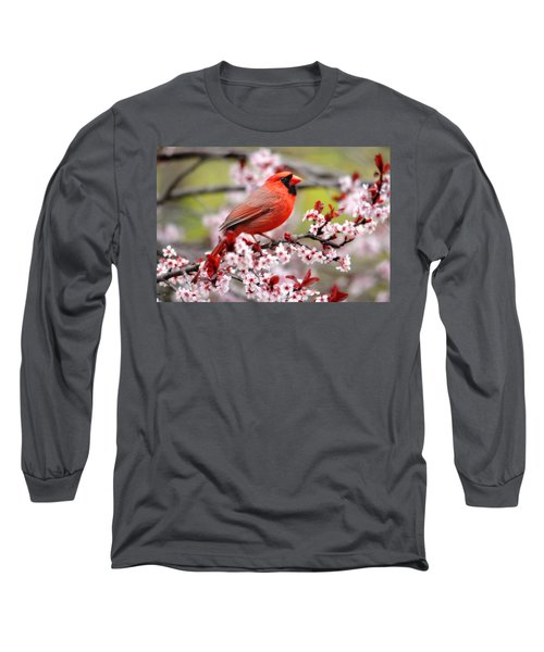 Beautiful Northern Cardinal Long Sleeve T-Shirt by Trina Ansel