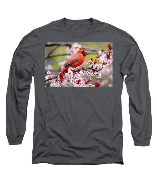 Beautiful Northern Cardinal Long Sleeve T-Shirt