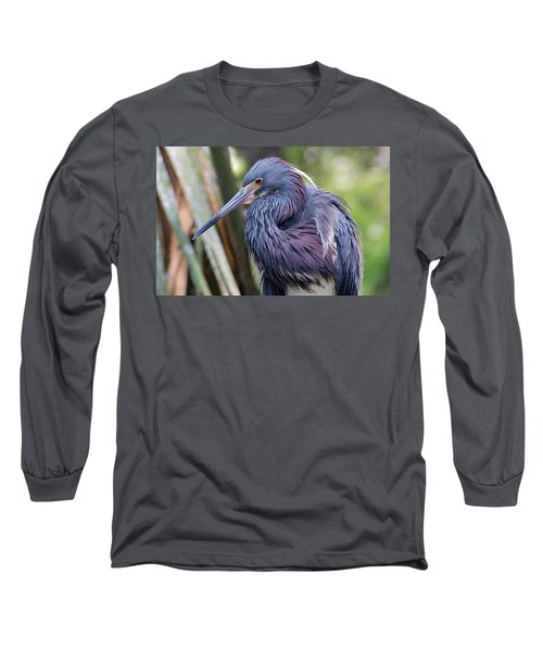 Beautiful Tricolored Heron Long Sleeve T-Shirt