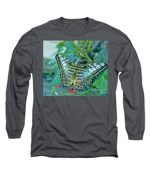 Beauty On Wings Long Sleeve T-Shirt by Steven Parker