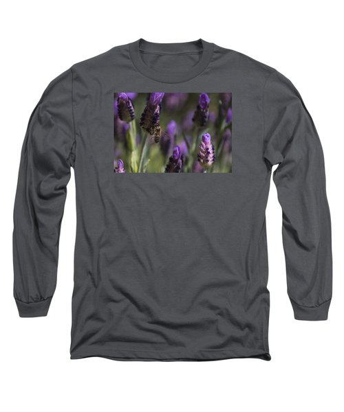 Long Sleeve T-Shirt featuring the photograph Bee's Delight by Laura Pratt