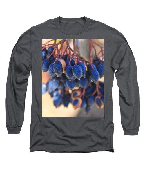 Berries Blue Too Long Sleeve T-Shirt