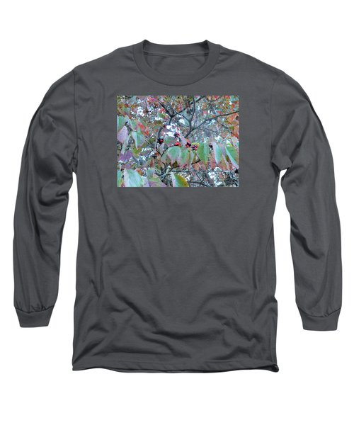 Berries Long Sleeve T-Shirt by Kay Gilley