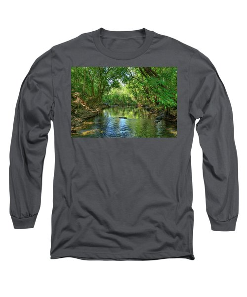 Berry Springs Long Sleeve T-Shirt by Racheal Christian