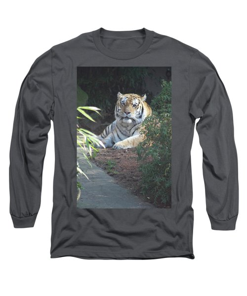 Long Sleeve T-Shirt featuring the photograph Beyond The Branches by Laddie Halupa