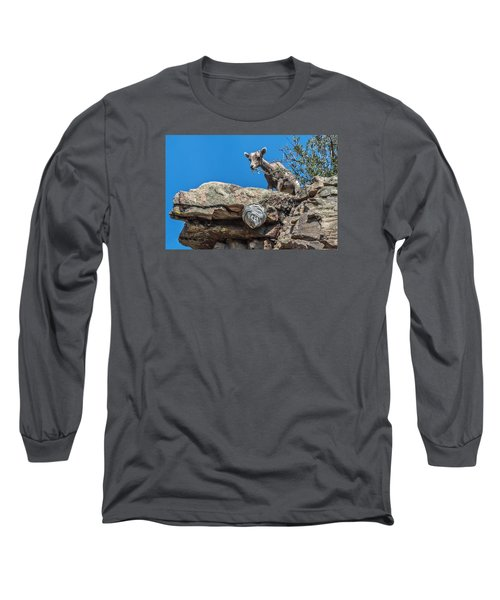 Big Horn Lamb Overlooking Hornets Nest Long Sleeve T-Shirt by Stephen  Johnson