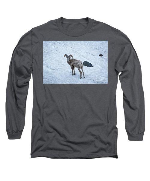 Big Horn Sheep  Long Sleeve T-Shirt
