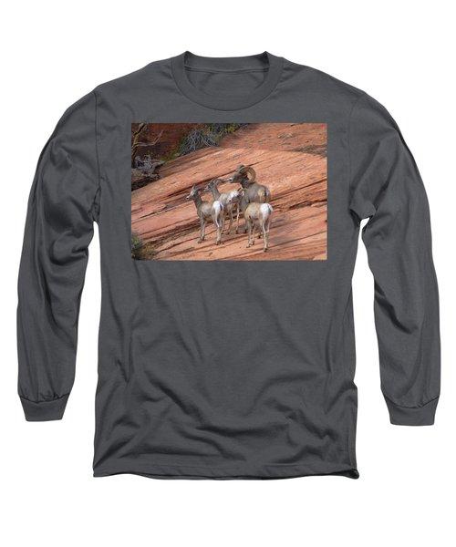 Big Horn Sheep, Zion National Park Long Sleeve T-Shirt