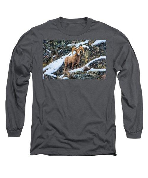 Bighorn Ram 3 Long Sleeve T-Shirt